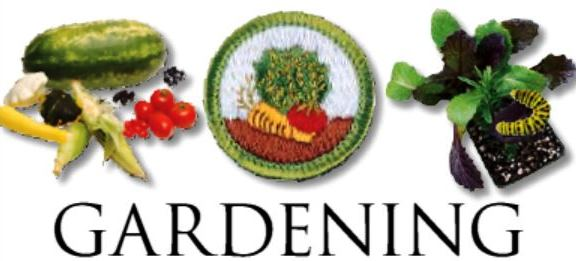 Gardening Merit Badge Offered for Boy Scouts