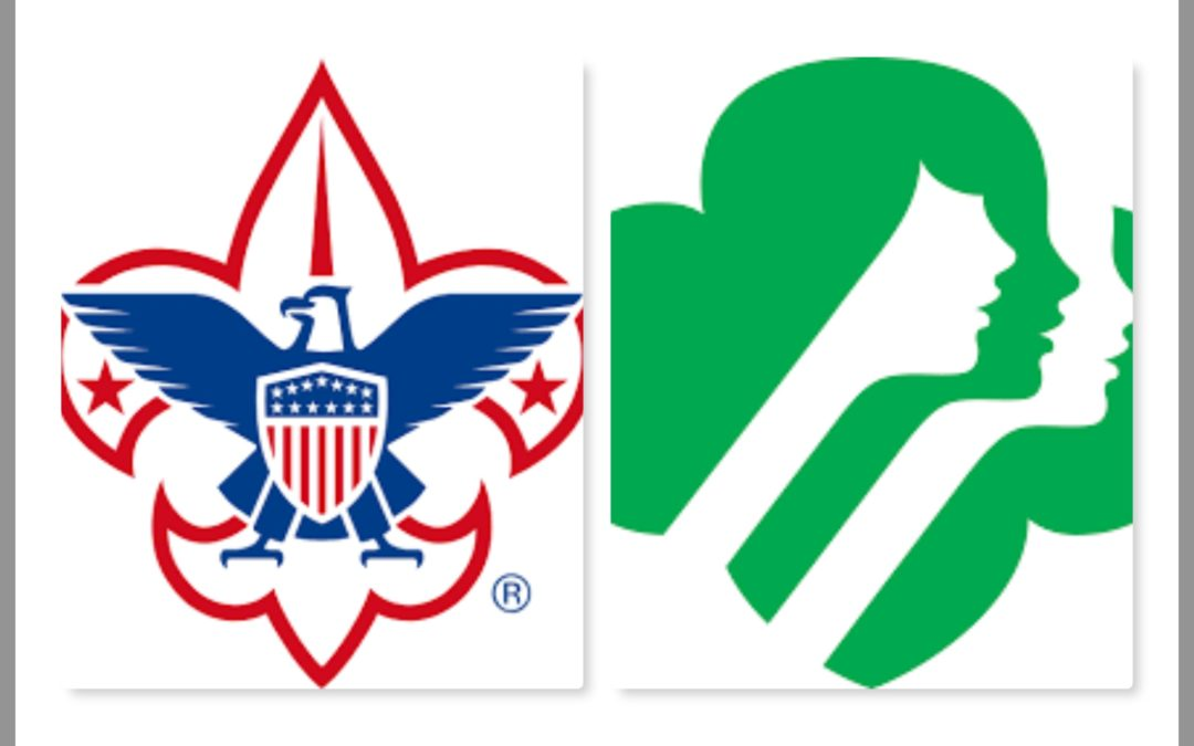 Boy and Girl Scout Programs Resume